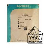 Мезофильно-термофильная закваска MA 4001 CHOOZIT Даниско, 25 DCU