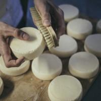 Что необходимо для домашнего сыроделия
