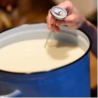 Пастеризация молока для сыроделия
