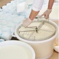 Как правильно нарезать сырный сгусток
