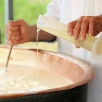 Отличие микробиального молокосвертывающего препарата от натурального сычужного фермента