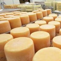 Создание натуральной сырной корки (покрытие сырной корки маслом)