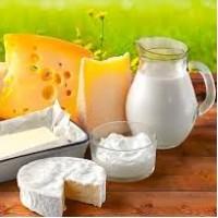 Выбор молока для сыроделия