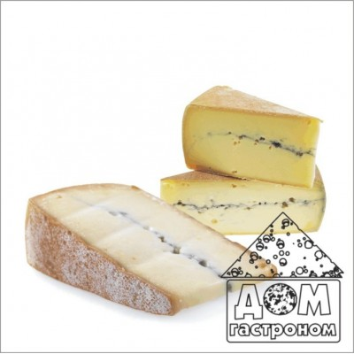 Закваска для домашнего приготовления сыра Морбье