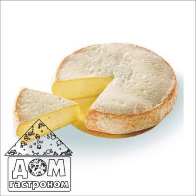 Закваска для домашнего приготовления сыра Реблошон